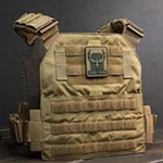 PLATE CARRIER VERITAS